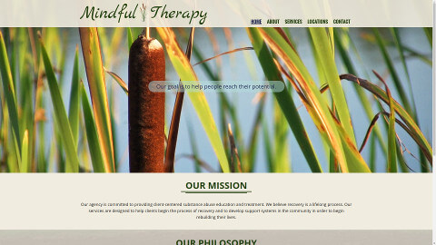 Mindful Therapy Agency